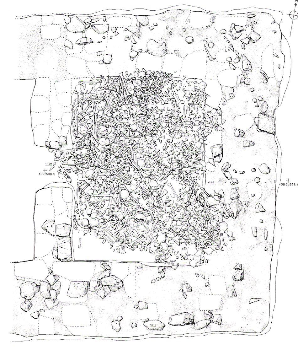 Viking Archaeology Repton Mass Burial Plan